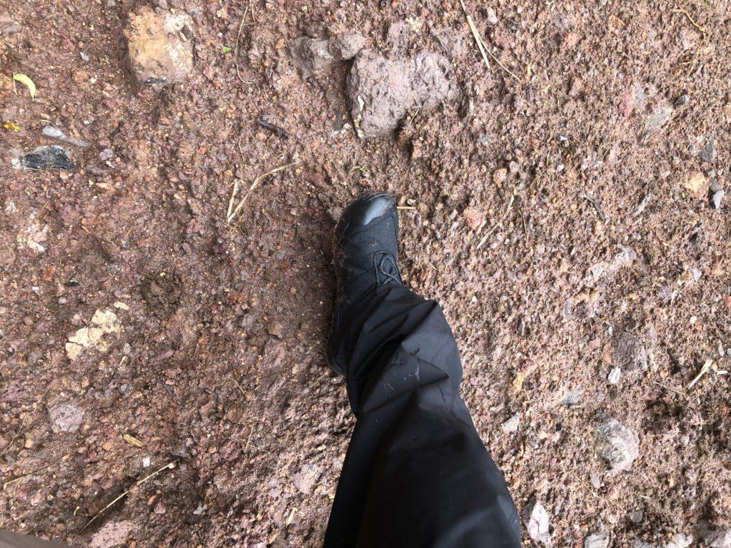 ダイワフィッシングシューズ DS-2150CDで歩いた山道